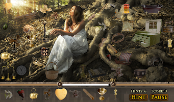 Screenshot of Hidden Object - Wings of Arian
