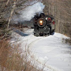 Steam in the snow by Janice Burnett - Transportation Trains ( locomotive, steam train, conway scenic railroad, train, usa, new hampshire )