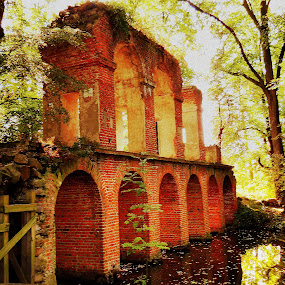 Old abandoned bridge... :-) by Ana Wisniewska - Buildings & Architecture Decaying & Abandoned