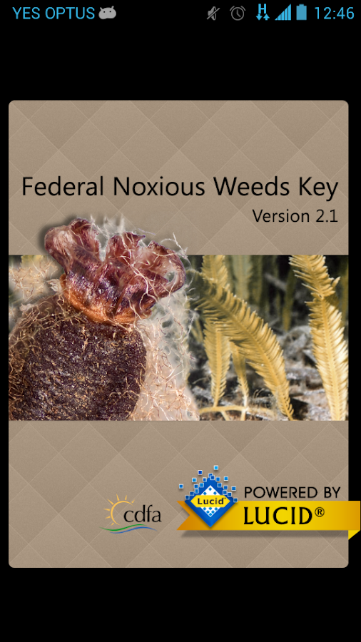 Federal Noxious Weeds Key- screenshot