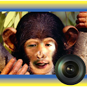 Animal Morph Camera logo