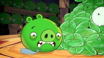 Pig Talent