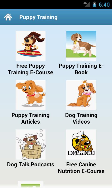 Puppy Training! - screenshot