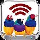 ViewSonic Wireless vPresenter icon