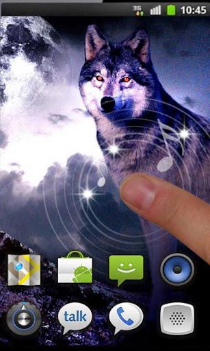 【免費個人化App】Wolves Night HD live wallpaper-APP點子