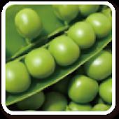 농수산물직거래협회