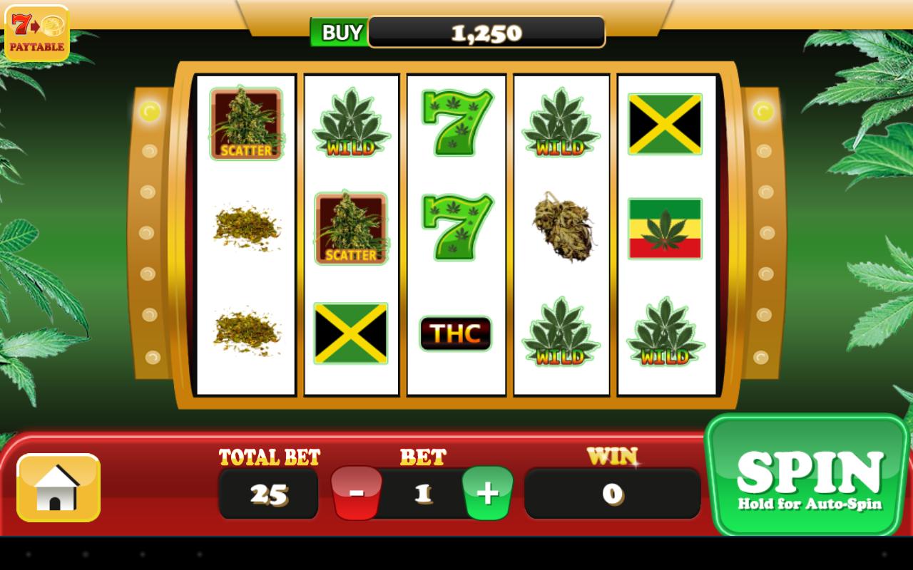 Pot casino