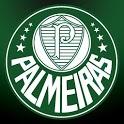 3D Palmeiras Fundo Animado icon