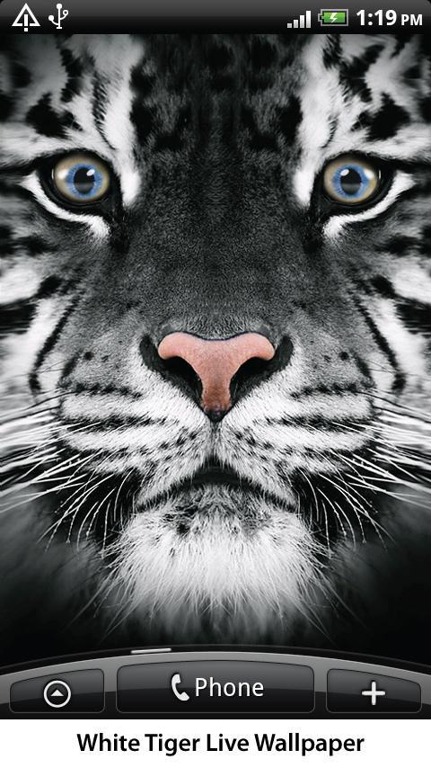 White Tiger Live Wallpaper- screenshot