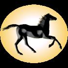 Solar System Derby icon