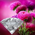 Pink Gerbera icon
