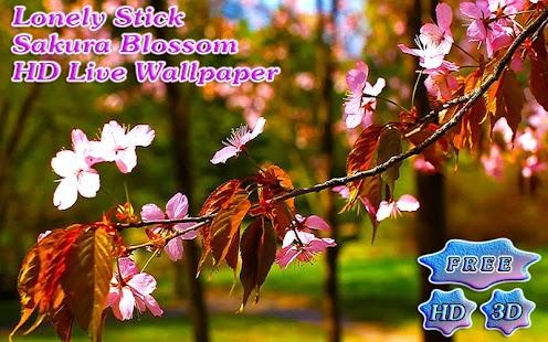 Sakura Blossom Branch - náhled