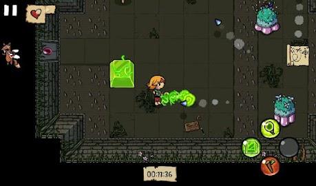 Ittle Dew Screenshot 6