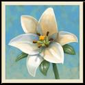 Inner Garden icon