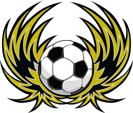 Wellington Phoenix Fan