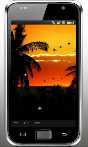 Sunset Africa live wallpaper