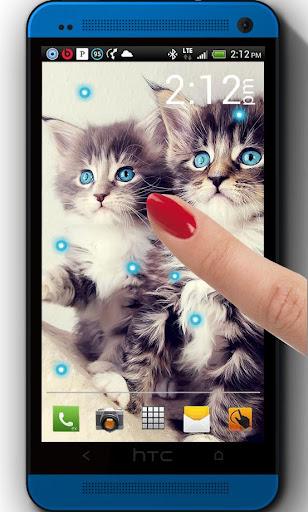 Cats n Kitties LWP
