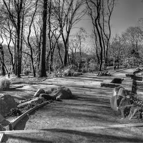 by Jeffrey Sutain - Black & White Landscapes (  )
