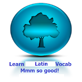 Learn Latin Mmm So Good