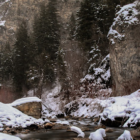 american fork canyon, utah by Axle Ethington - Landscapes Waterscapes ( america, utah, beautiful, american fork canton )