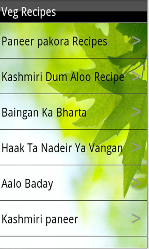 North Indian Recipes - screenshot