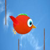 Dodgy Bird