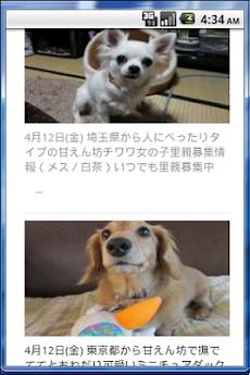 『ペットの命』犬・猫里親募集情報 -首都圏版-のおすすめ画像4