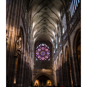 St. VItus cathedral! by Marko Icelic - Buildings & Architecture Statues & Monuments