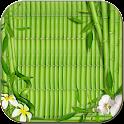 綠色優雅的壁紙 icon