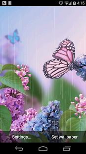 雨天蝴蝶春天花朵壁紙
