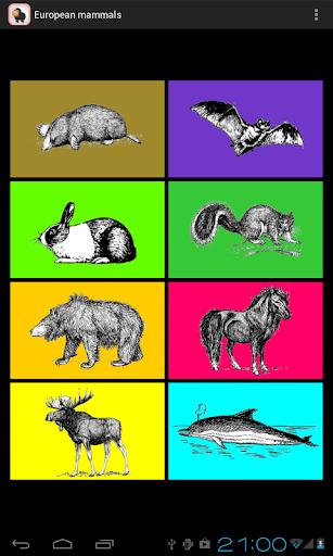 European Mammals