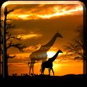 African Scene LITE logo