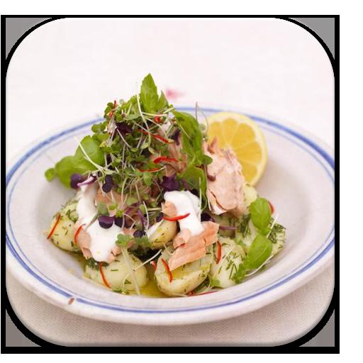 Salad Recipes Free App