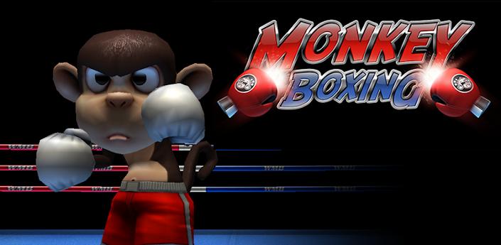 Macaco Boxe