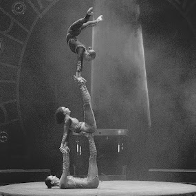 Circus Acrobats by Stephen Beatty - News & Events Entertainment (  )