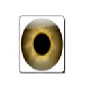 Eye Test logo