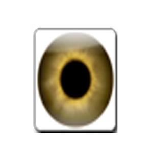 眼測試 LOGO-APP點子