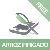 Diagnoses - Arroz Irr. - Free