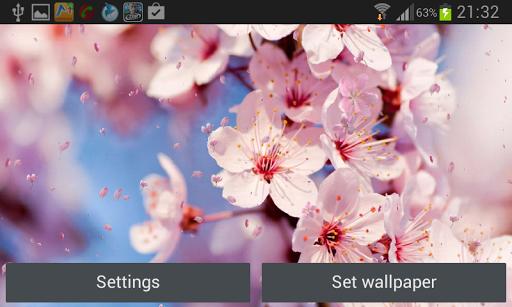 【免費個人化App】櫻花動態壁紙-APP點子