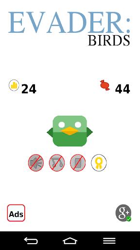 Evader: Birds
