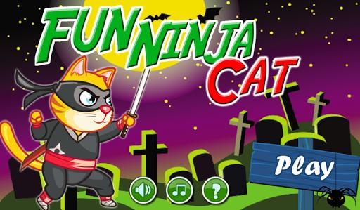 Fun Ninja Cat