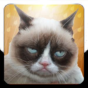 Grumpy Cat: Unimpressed for PC and MAC
