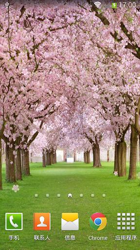 桃花動態壁紙