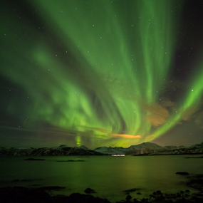 Aurora over Summer Island by Geir Hammer - Landscapes Waterscapes ( water, windy, green, aurora, aurora borealis, northern lights, colours, norway, northern, mountains, winter, cold, color, islands, rocks )