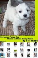 Screenshot of LITE Puppy Dog Theme CrazyHome