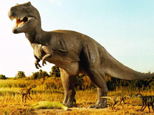 恐竜の壁紙