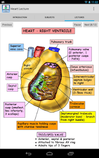 Anatomy Heart Lecture - screenshot thumbnail