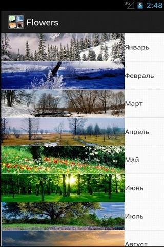 Календарь цветов