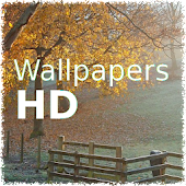 Wallpapers with fields