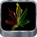 Weed HD. Live wallpaper. icon